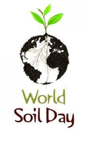 World Soil Day: Keep soil alive, Protect soil biodiversity